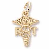 14K Gold Respiratory Therapist Charm by Rembrandt Charms