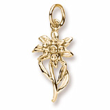 14K Gold Edelweiss Flower Charm by Rembrandt Charms