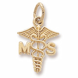 14K Gold Medical Secretary Caduceus by Rembrandt Charms