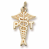 10K Gold Physical Therapy Assistant Charm by Rembrandt Charms