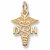 10K Gold Dental Hygienist Caduceus Charm by Rembrandt Charms