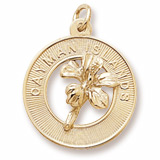 Gold Plated Grand Cayman Hibiscus Charm by Rembrandt Charms