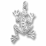 14K White Gold Frog Charm by Rembrandt Charms
