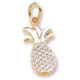 10k Gold Pineapple Charm by Rembrandt Charms