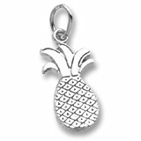 14k White Gold Pineapple Charm by Rembrandt Charms