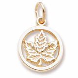 Gold Plate Ringed Maple Leaf Accent Charm by Rembrandt Charms