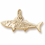 14K Gold Mackerel Fish Charm by Rembrandt Charms