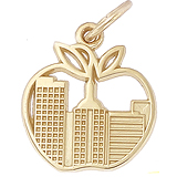 Big Apple New York Charm