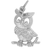 14K White Gold Horned Owl Charm by Rembrandt Charms