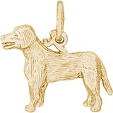 Gold Plated Labrador Retriever Charm by Rembrandt Charms