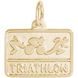 14k Gold Triathlon Charm by Rembrandt Charms