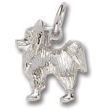14K White Gold Papillon Charm by Rembrandt Charms