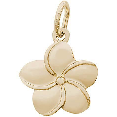 14K Gold Plumeria Flower Charm by Rembrandt Charms