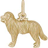 Gold Plate Newfoundland Dog Charm by Rembrandt Charms