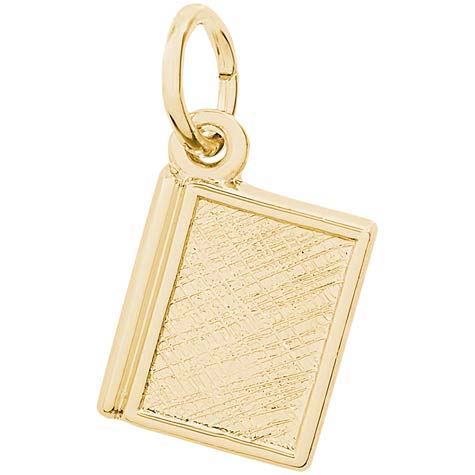 Gold Plate Book Charm by Rembrandt Charms