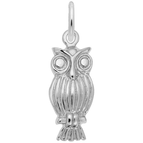 14K White Gold Screech Owl Charm by Rembrandt Charms