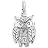 14K White Gold Wise Owl Charm