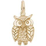 14K Gold Wise Owl Charm