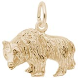 Gold Plate Grizzly Bear