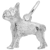 14K White Gold French Bulldog Charm by Rembrandt Charms